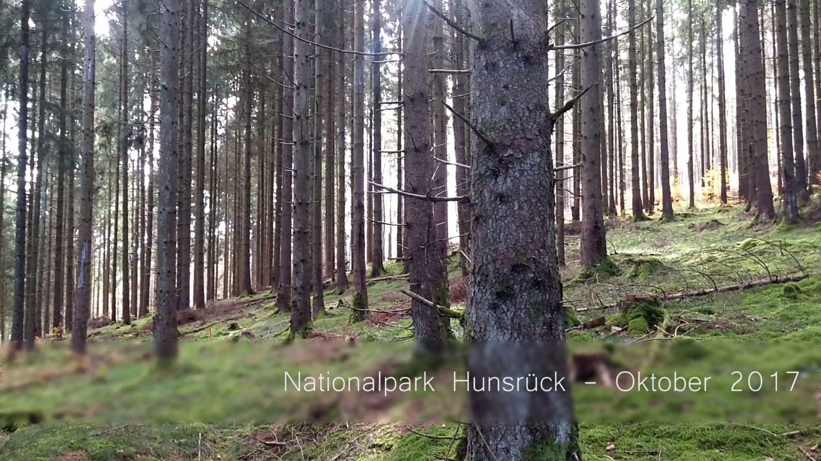 Nationalpark Hunsrück